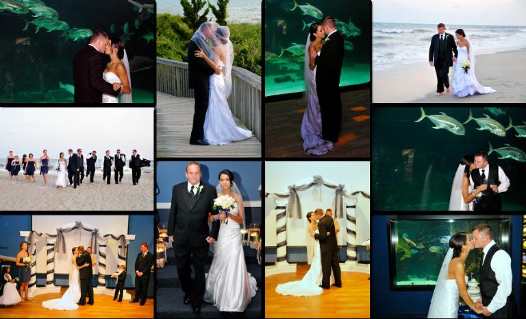 North Carolina Aquarium Pine Knoll Shores Wedding Mr