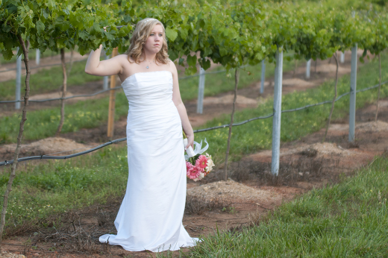 Wedding Photos in North Carolina